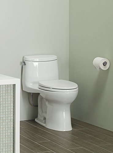 Toto MS604114CEFG#11 bathroom-hardware