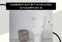 Amaerican Standard Champion 4