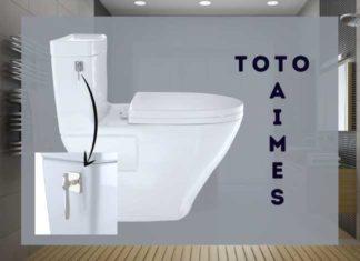 Toto Aimes