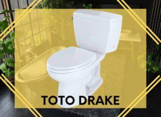 Toto Drake