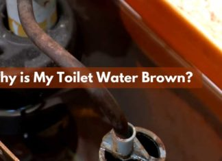 Why is My Toilet Water Brown?